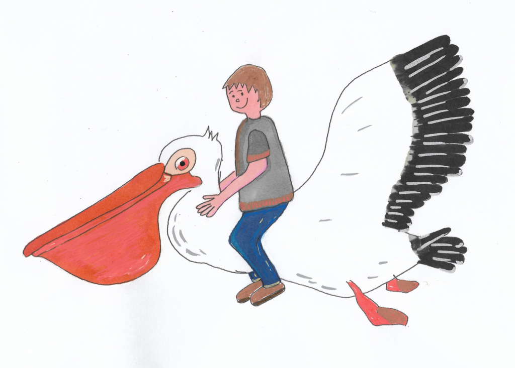 dessiner un pelican au posca